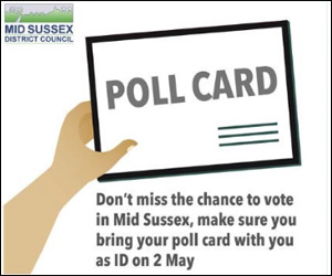 mid sussex elections