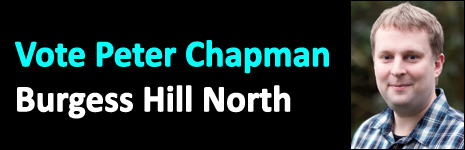peter chapman west sussex county council elections