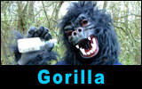 Gordon The Gorilla