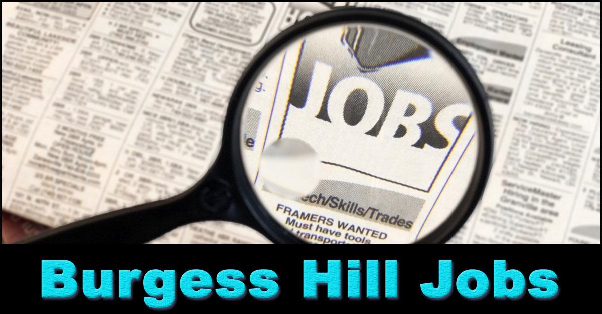 company careers hill